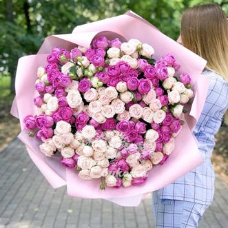 101-rozovaya-kustovaya-roza